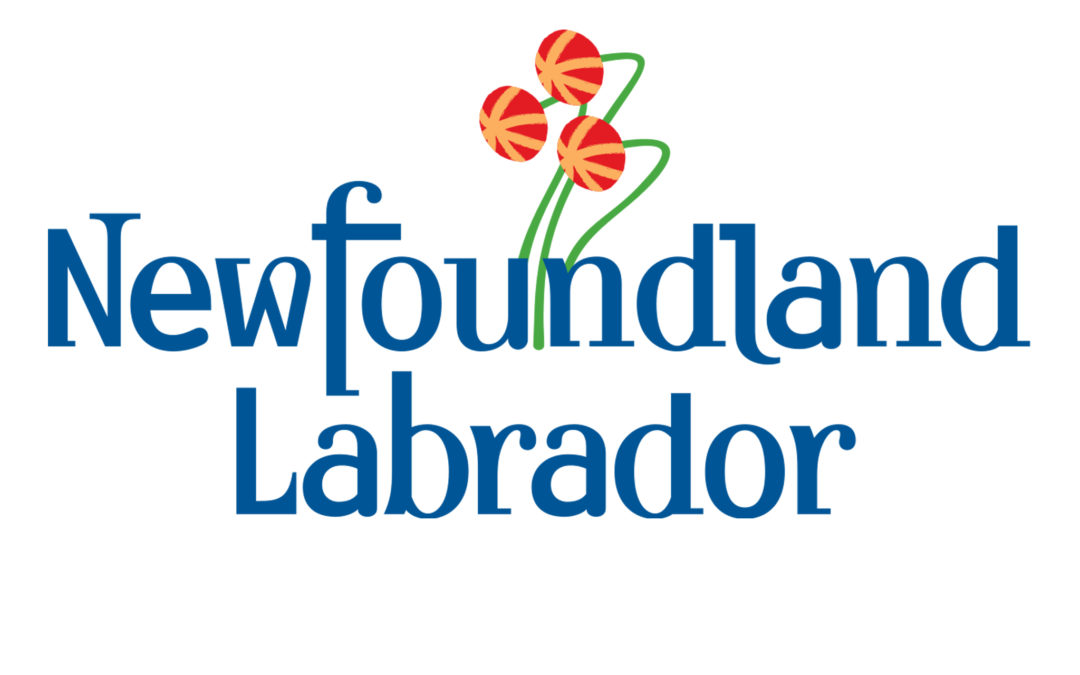 Updated EzDataRoom® Web Virtual Data Room supporting the Canada-Newfoundland & Labrador Offshore Petroleum Board Call for Bids NL20-01